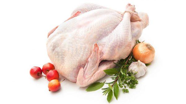 Organic free-range Bronze turkey 2