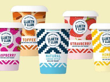 llaeth-y-llan yogurt